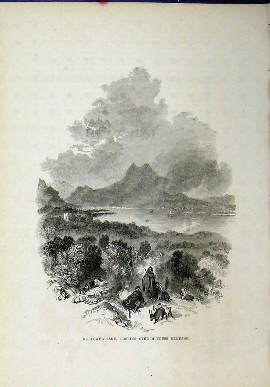 Print View Lower Lake Mucruss Demesne Country Mountains 299A193 Old Original