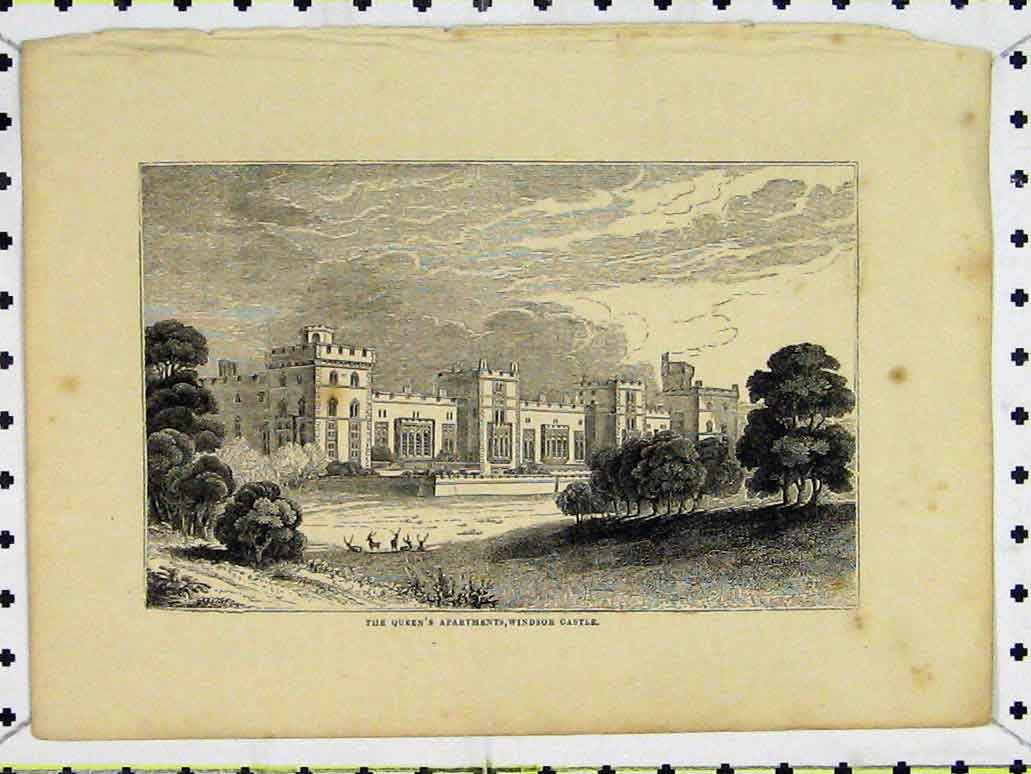 Print View Queen'S Apartments Windsor Castle Royal Family 221A197 Old Original