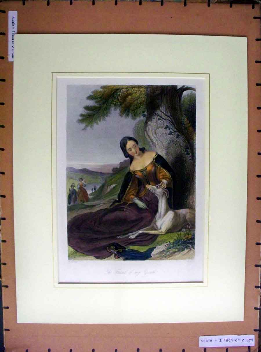 [Print Hand Coloured C1880 Beautiful Lady Woman Pet Dog Hound 103A200 Old Original]