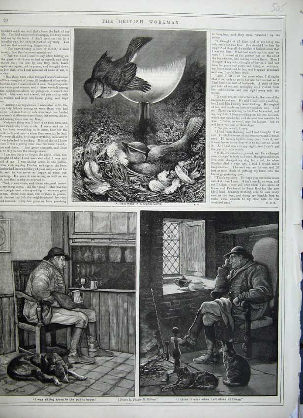Print Bird Tit'S Nest Signal Lamp Men Public House Cat Dog 505C217 Old Original