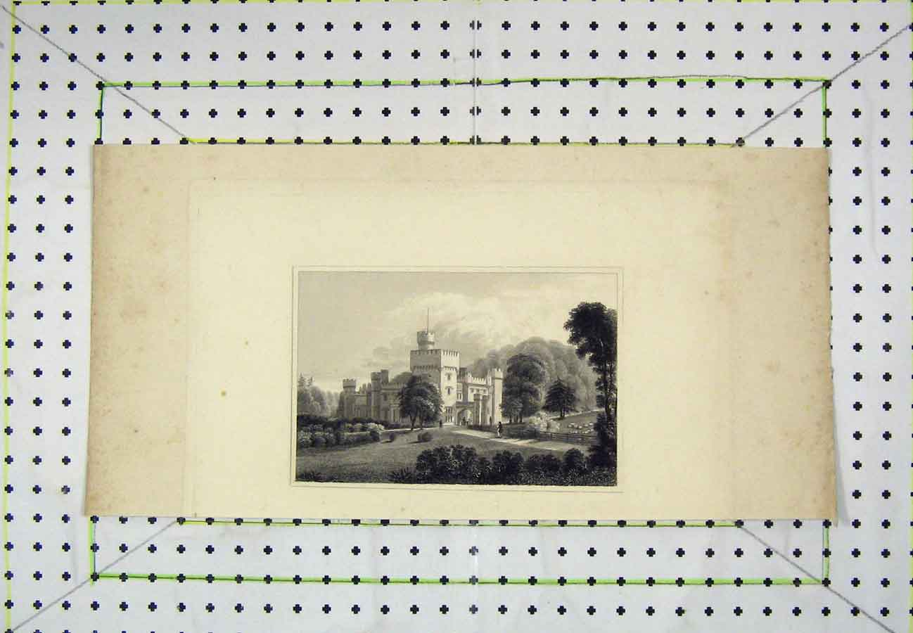 Print Mansion House Castle Country Garden Scene 520B203 Old Original