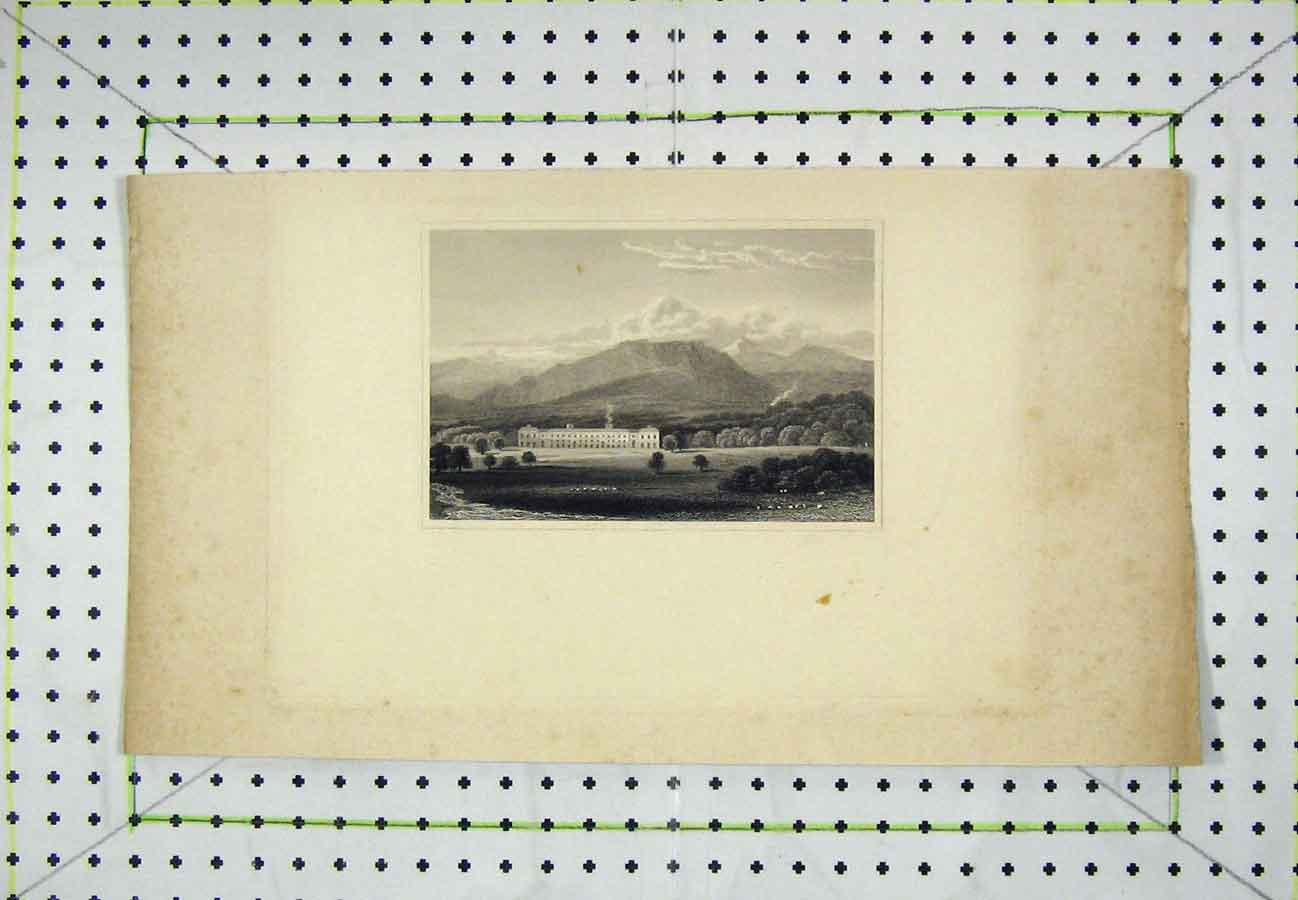 Print Mountain Scene Mansion House Country 521B203 Old Original