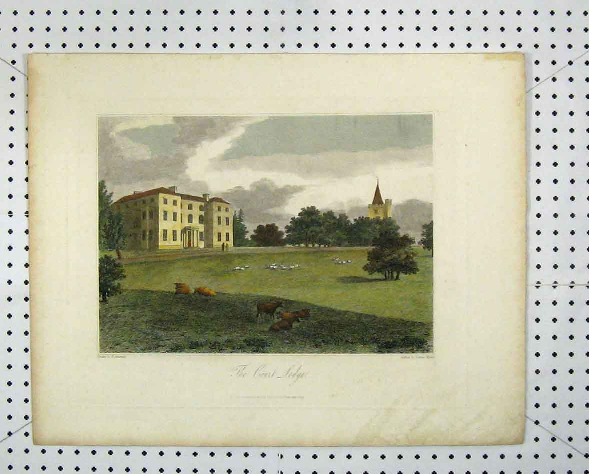 Print 1809 Colour Court Lodge Garden Cows Sheep Byrne 242B205 Old Original