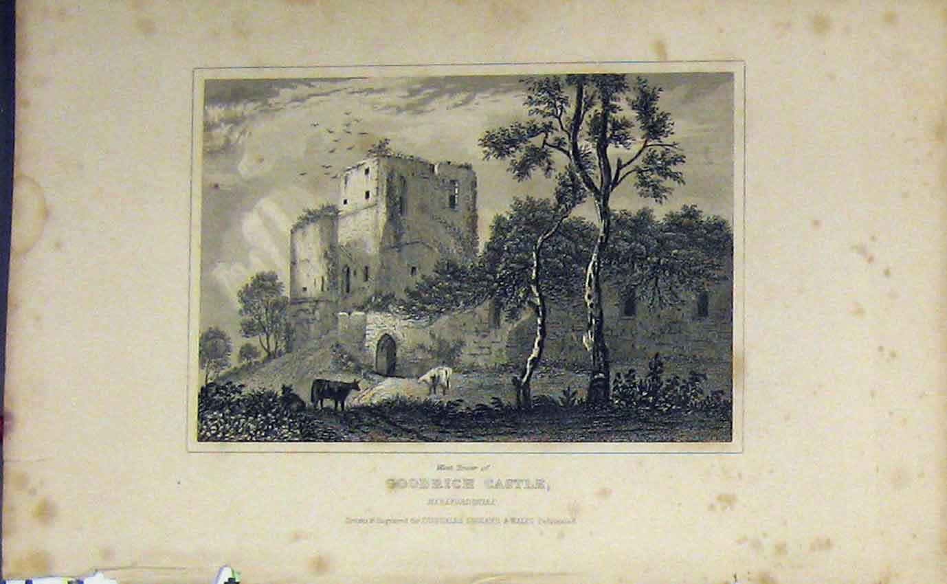 Print C1850 West Tower Goodrich Castle Herefordshire Dugdales 911B207 Old Original