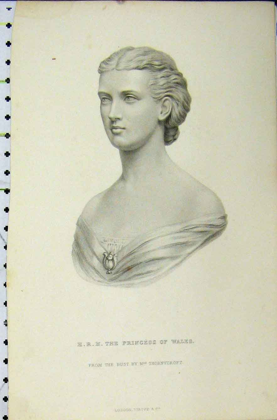 Print C1850 Steel Engraving Portrait Princess Wales 209B211 Old Original