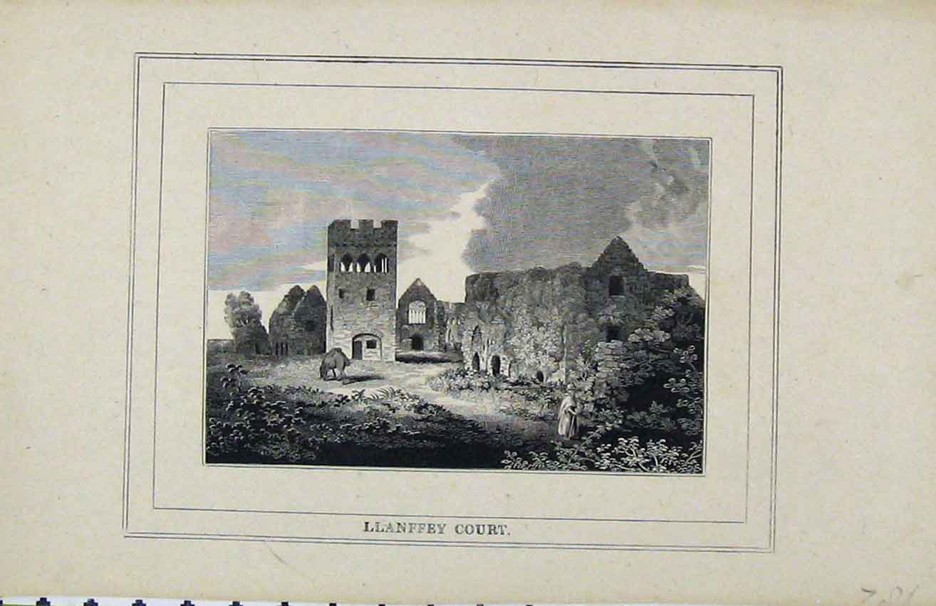 Print C1850 View Llanffey Court Ruins Pembrokeshire Country 219B216 Old Original