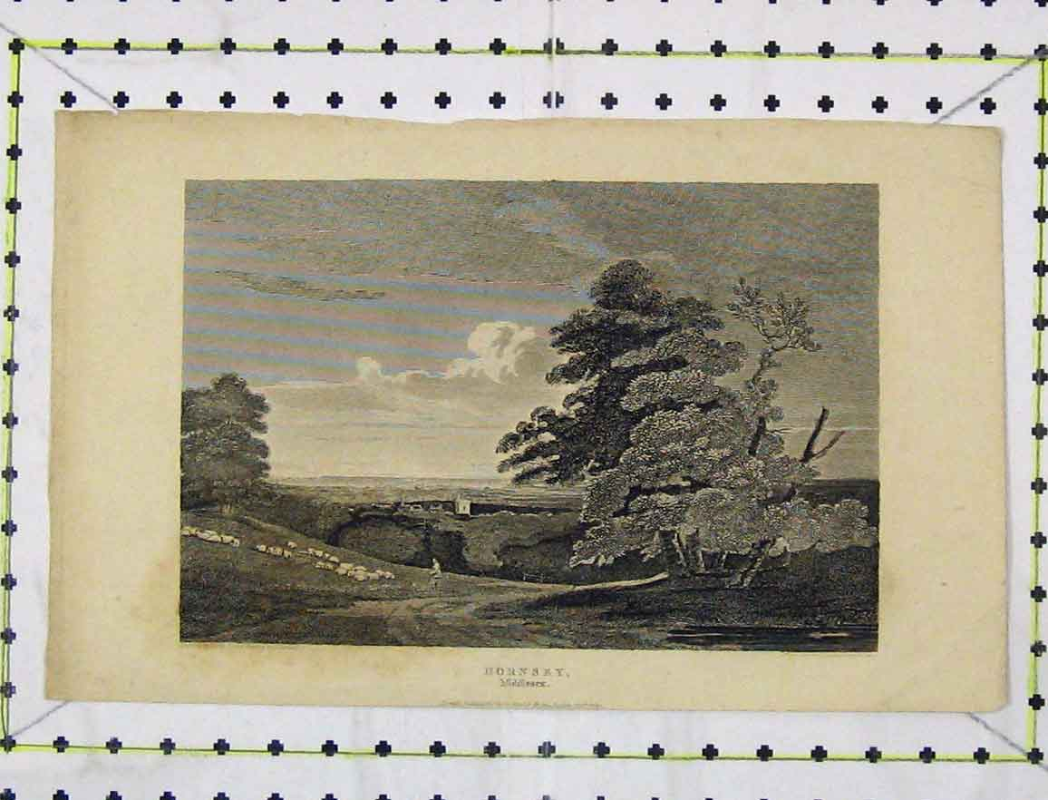 Print 1811 Steel Engraving Country View Horsey Middlesex 122B219 Old Original