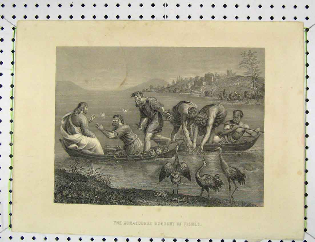 Print Engraving Scene Miraculous Draught Fishes 306B221 Old Original
