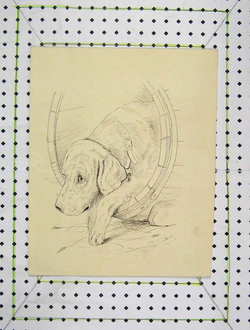 Print Drawing Puppy Dog Inside Water Barrel 173B222 Old Original