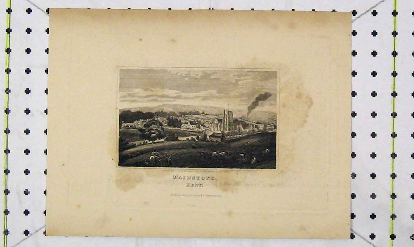 Print 1820 View Town Maidstone Kent England Hawksworth 155B226 Old Original