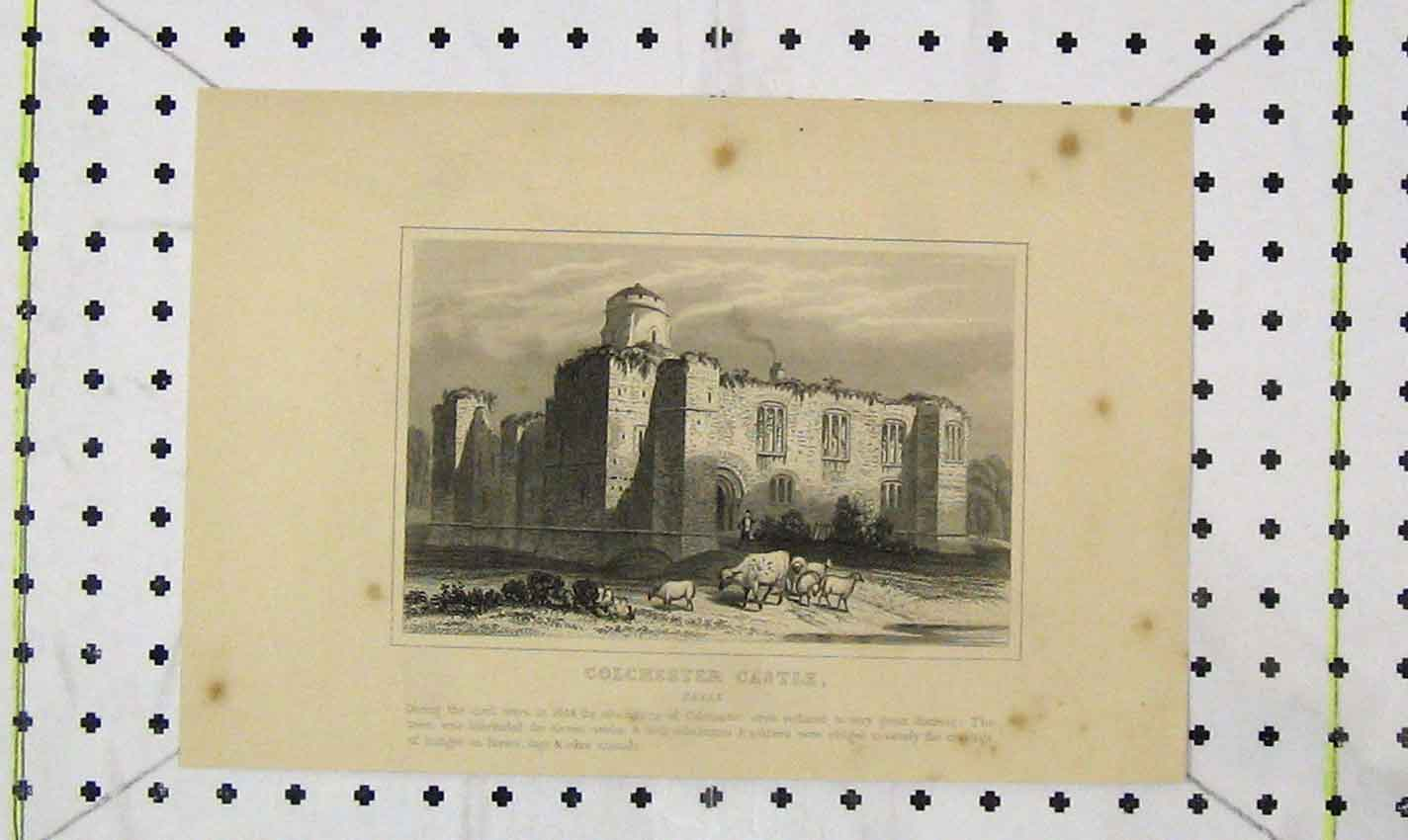 Print View Colchester Castle Essex Country 216B226 Old Original