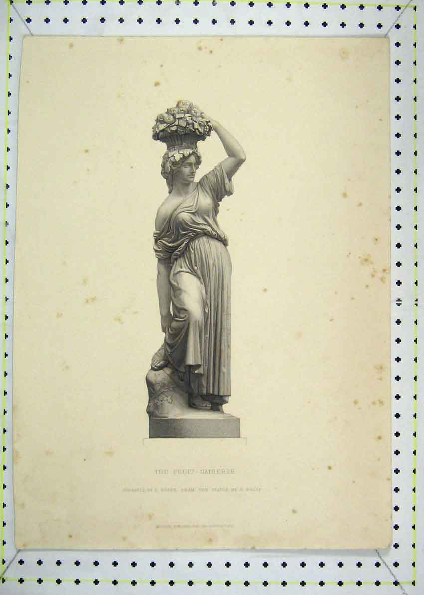 Print Fruit Gatherer Statue Roffe Engraving 124B229 Old Original