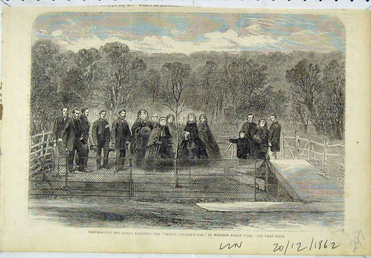 Print Majesty Queen Prince Consort Oak Tree 1862 Windsor 297B246 Old Original