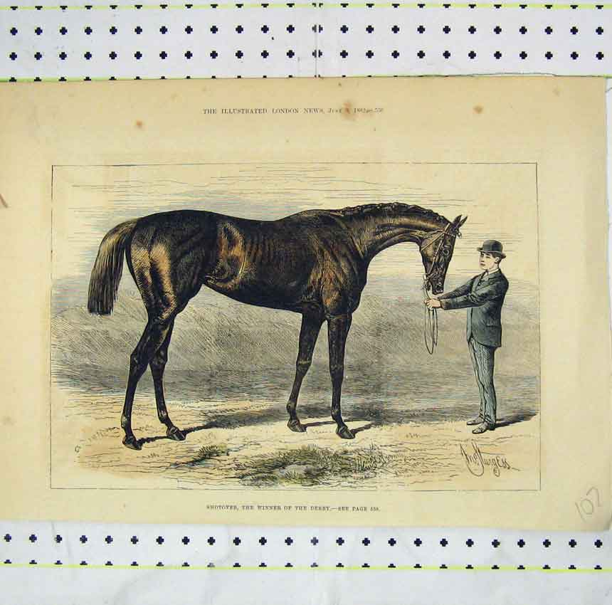 Print 1882 View Shotover Horse Winner Derby 107B248 Old Original
