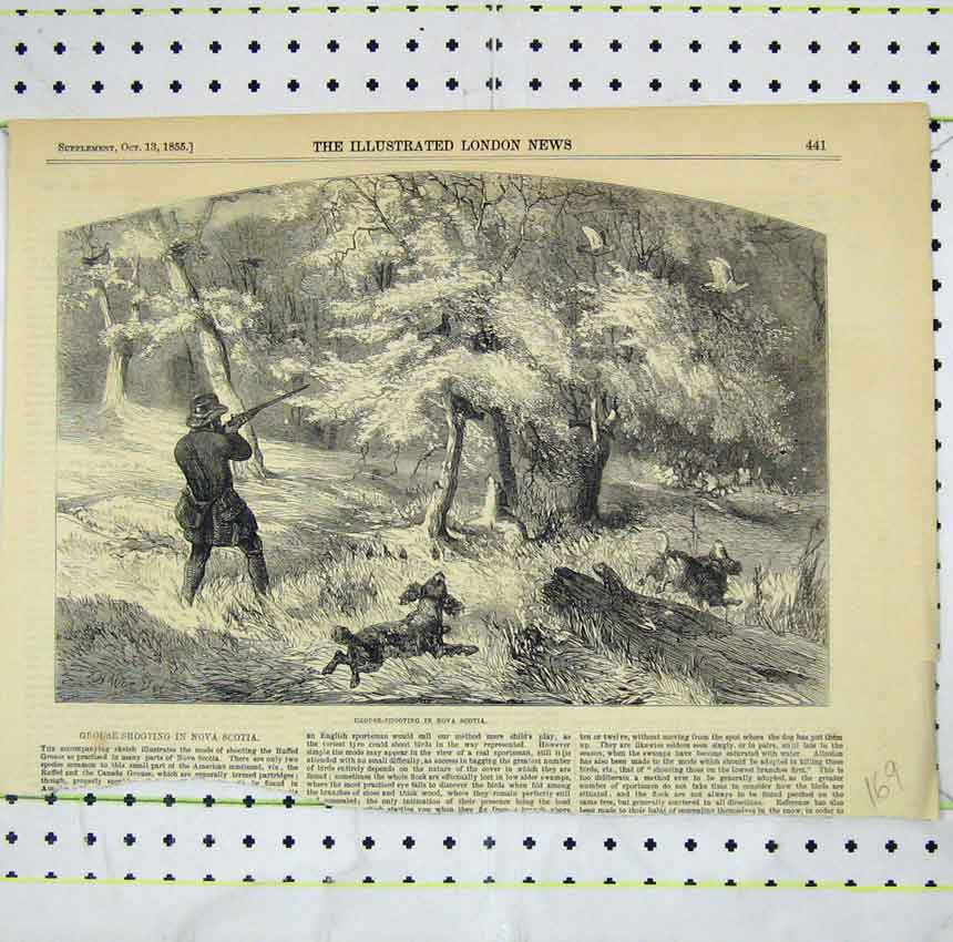 Print 1855 View Grouse Shooting Nova Scotia 169B248 Old Original