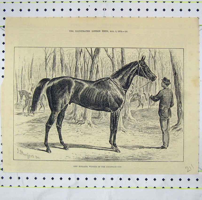 Print 1876 New Holland Horse Winner Goodwood Cup 211B248 Old Original