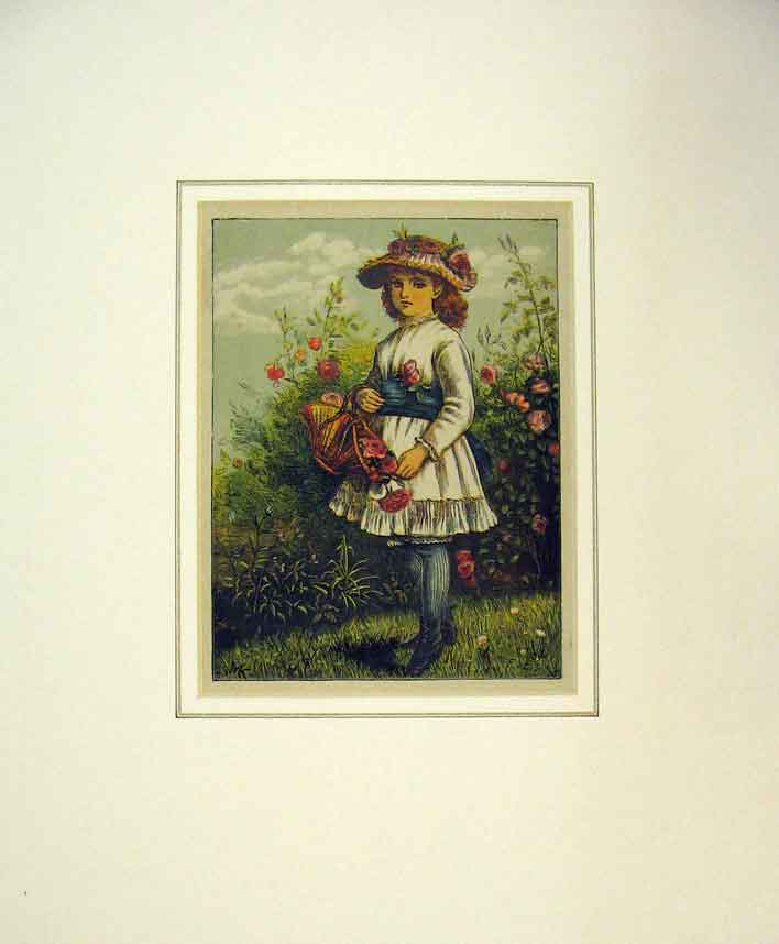 Print 1882 Colour Young Girl Basket Flowers 126B257 Old Original