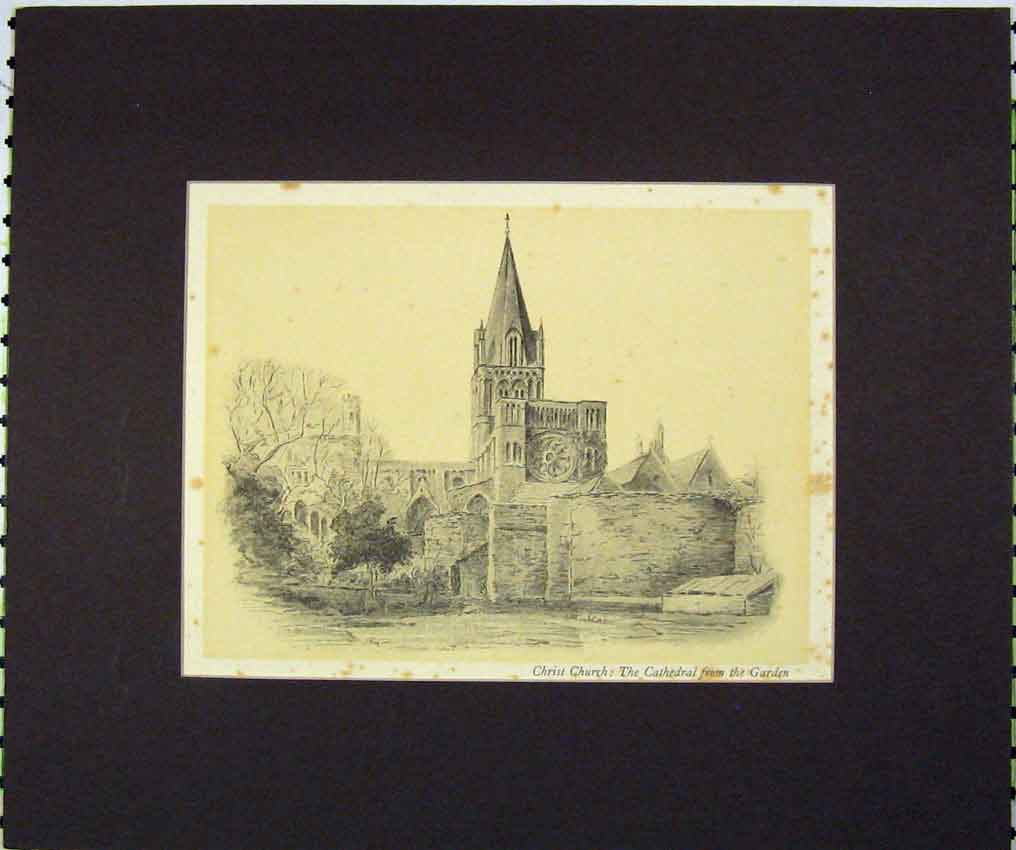 Print 1934 View Christ Church Cathedral Garden 109B266 Old Original