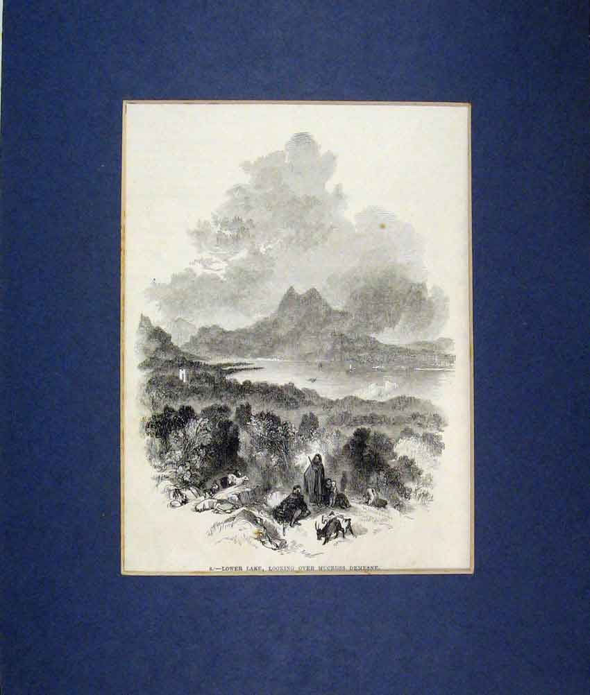 Print 1900 View Lower Lake Mucruss Demesne 514B271 Old Original