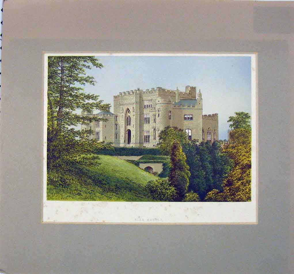 Print 1870 View Birr Castle Ireland Garden 302B284 Old Original