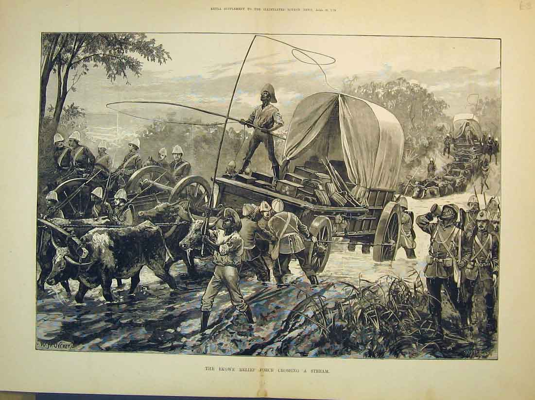 Print 1879 War Ekowe Force Crossing Stream Cows Wagon Trees 125B349 Old Original