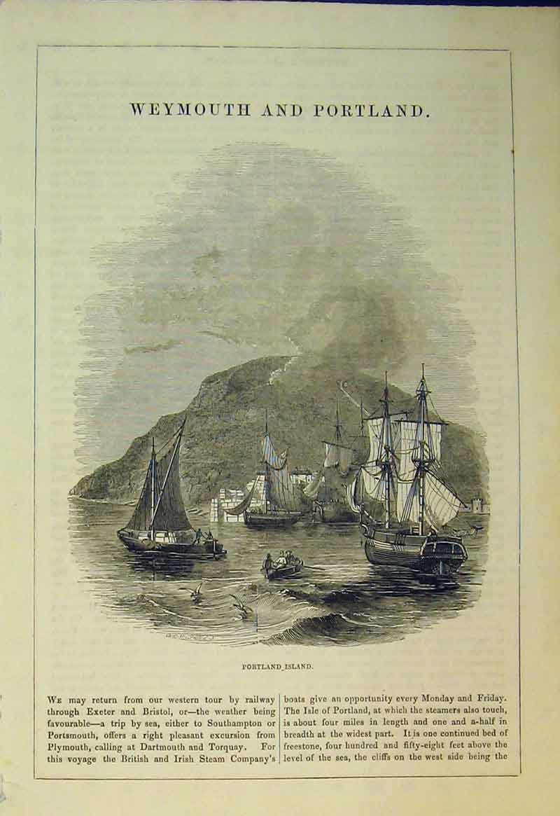 Print View Portland Island Sailing Ship Mountain Birds Sea 546B361 Old Original