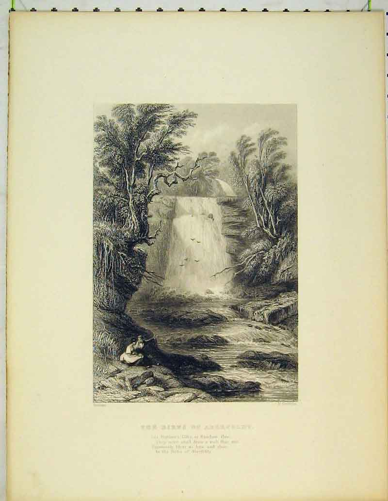 Print View Birks Aberfeldy Scotland Waterfall Romance Trees 415B362 Old Original