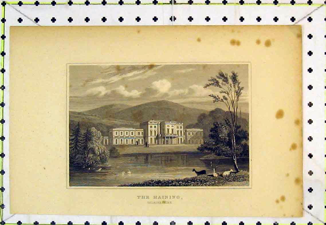 Print Exterior View The Haining Selkirkshire Scotland Country 317B363 Old Original