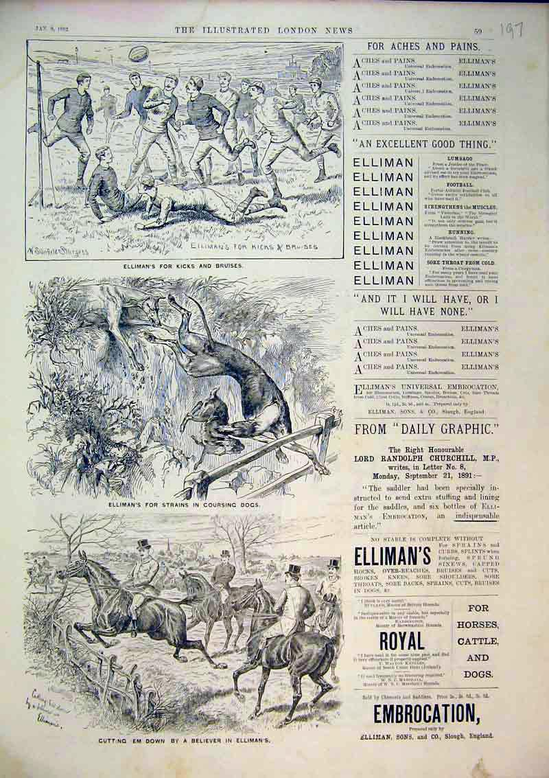 Print 1892 Advert Elliman'S Embrocation Horse Hounds Hunting 197B367 Old Original