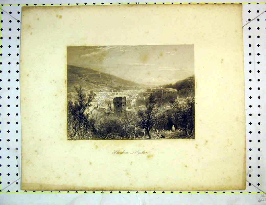 Print View Shechem Sychar Buildings Mountains Trees Country 238B372 Old Original