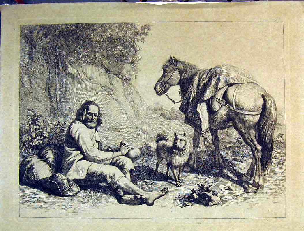 Print Man Dog Horse Trees Country Mountains 616B378 Old Original