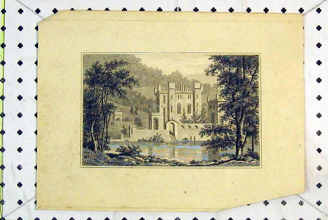 Print View Mansion House Castle Trees Lake 142B379 Old Original