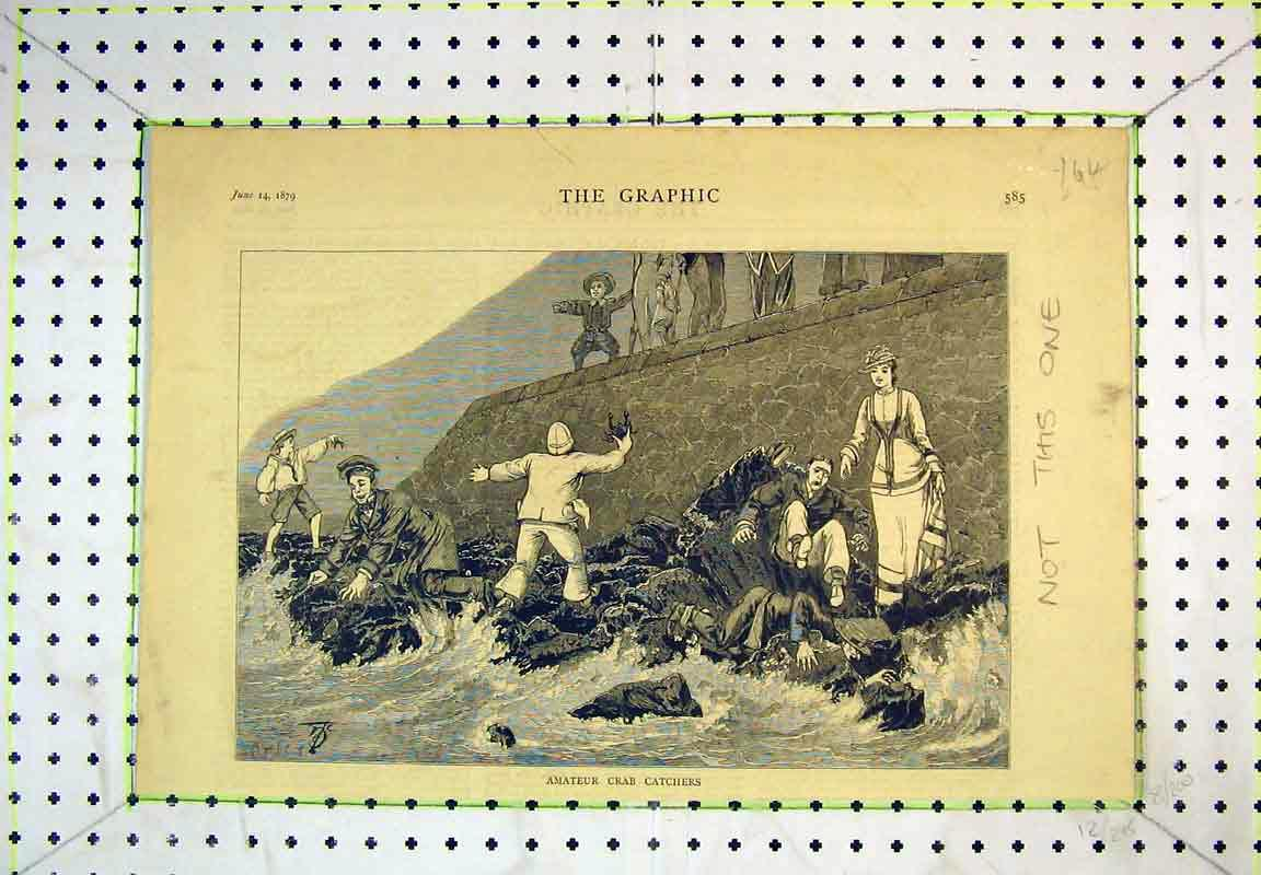 Print 1879 Amateur Crab Catchers Sea Fishing Rocks Coast 164B380 Old Original