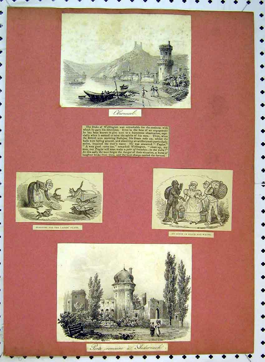 Print View Porte Andernach C1849 Mountains Boat River Cats 514B383 Old Original