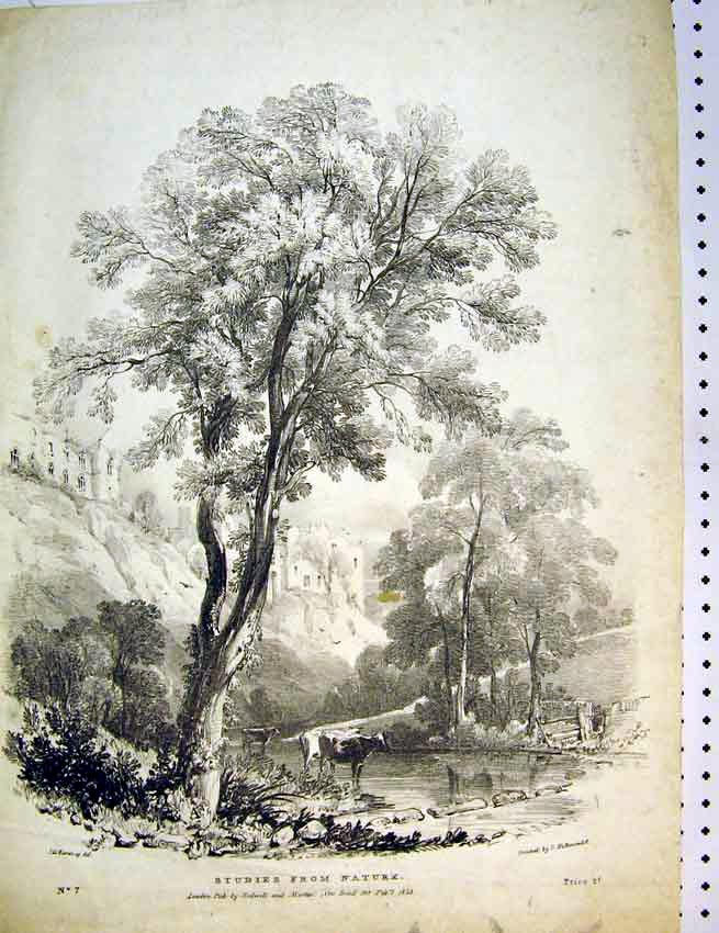 Print 1823 Country View Nature Cow Castle River Trees Martin 572B387 Old Original
