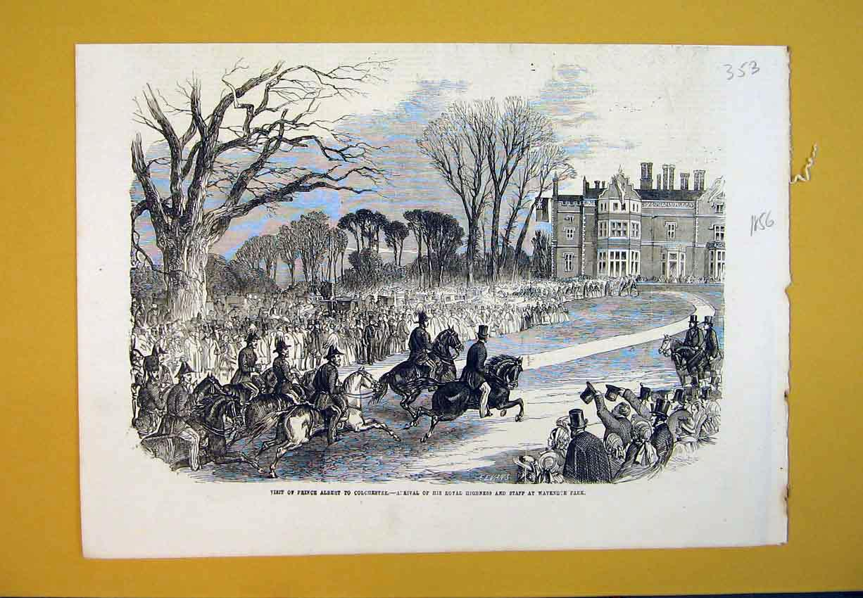 Print 1856 Prince Albert Colchester Park Royalty Horse House 353B388 Old Original