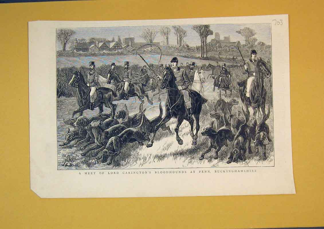 Print Lord Carington'S Bloodhounds Penn Buckinghamshire 703B390 Old Original