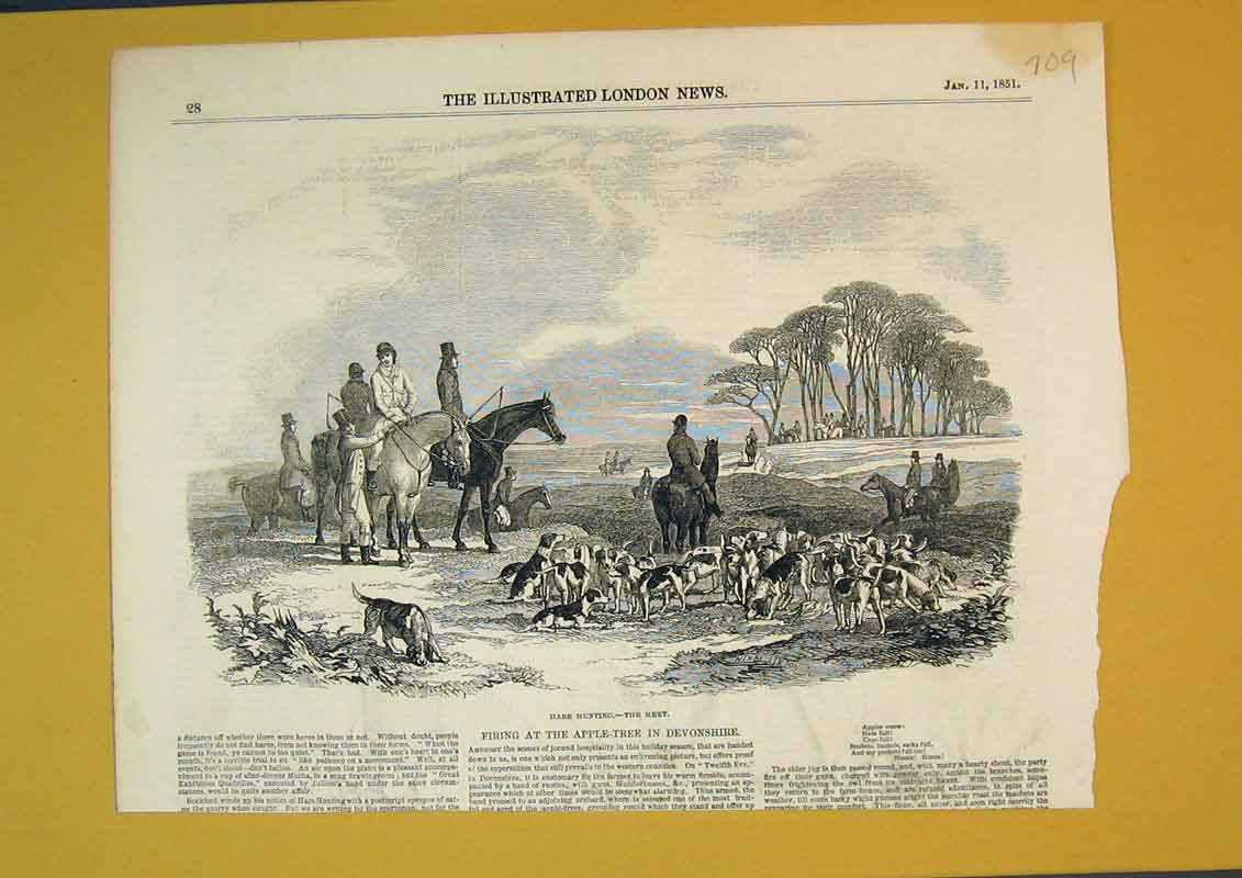 Print 1851 Hare Hunting Horse Hounds Dogs Country Scene Sport 709B390 Old Original