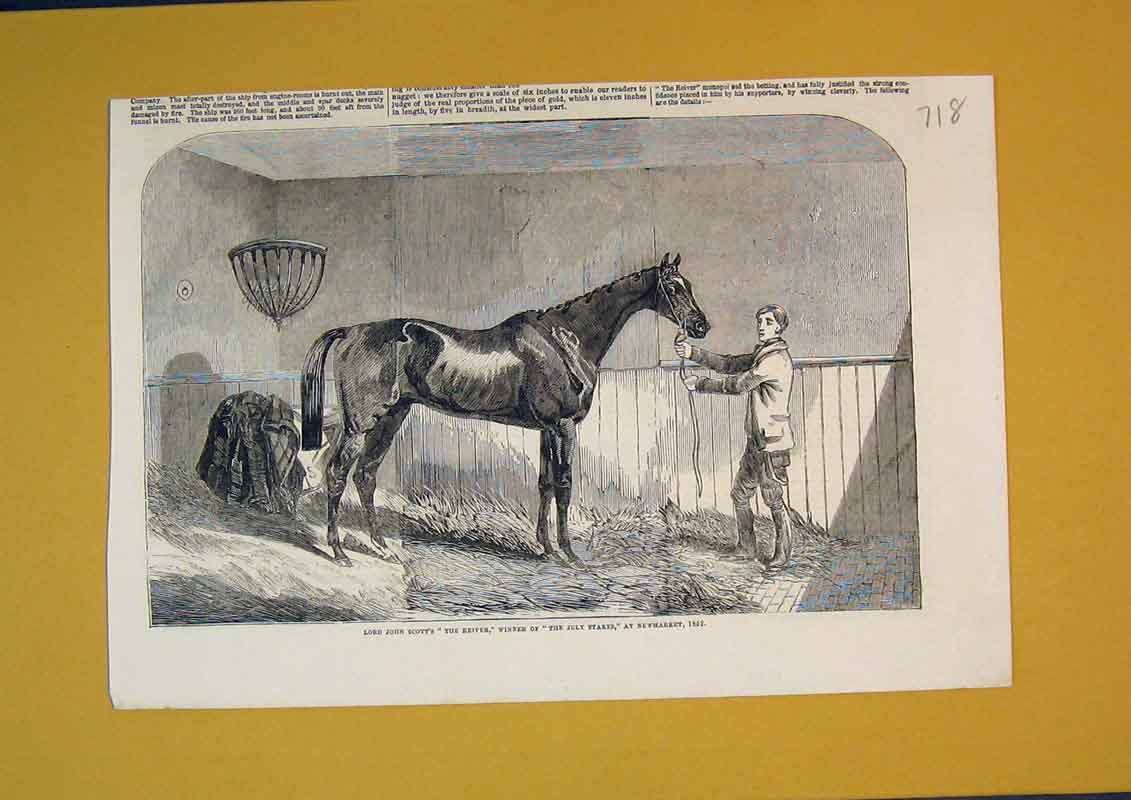 Print Race Horse Lord John Scott Reiver July Stakes Newmarket 718B390 Old Original