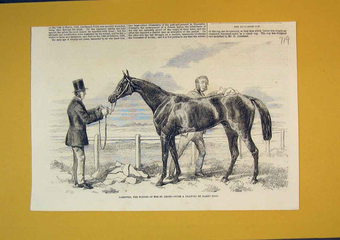 Print Race Horse Gamester Winner St Leger Grooming Sport 719B390 Old Original