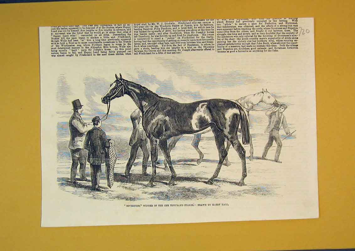 Print Race Horse Governess Winner Thousand Stakes Sport 720B390 Old Original