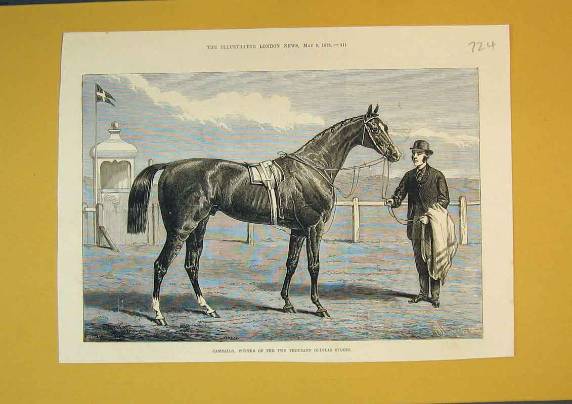 Print 1875 Race Horse Camballo Two Thousand Guineas Stakes 724B390 Old Original