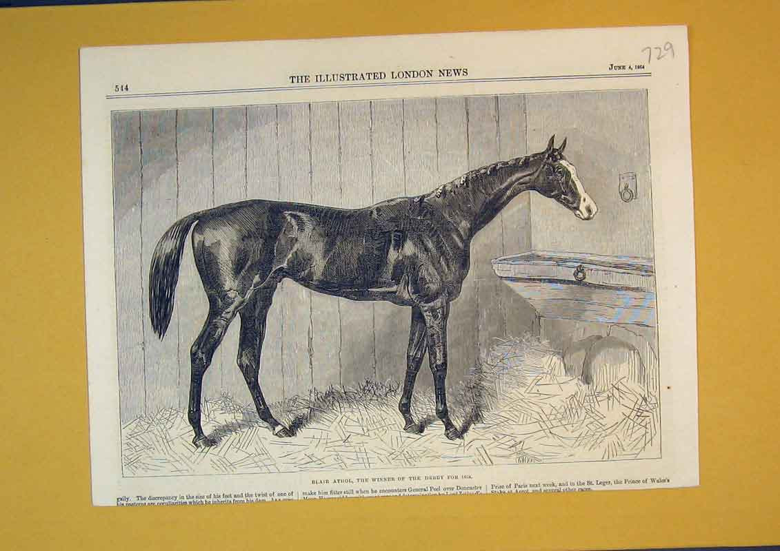 Print 1864 Horse Blair Athol Winner Derby Sport Stable 729B390 Old Original