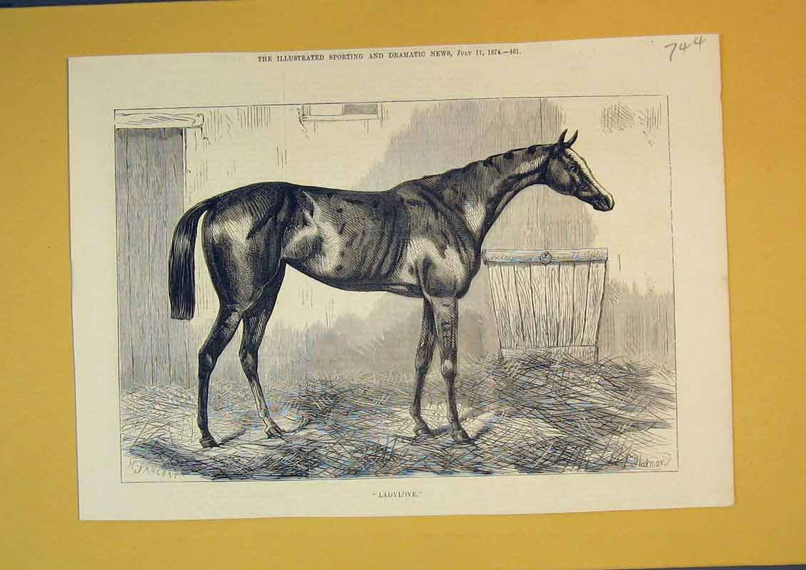 Print 1874 Horse Stable Ladylove Animal Straw 744B390 Old Original