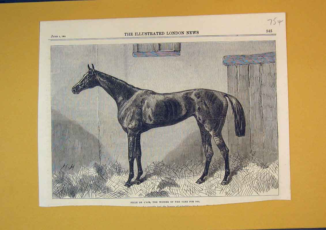 Print 1864 Race Horse Fille De L'Air Winner Oaks Animal 754B390 Old Original
