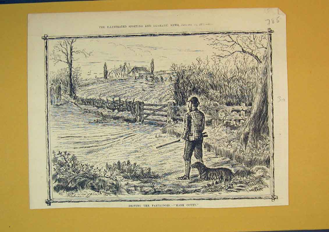 Print 1875 Country Scene Partridge Shooting Man Rifle Hounds 785B390 Old Original
