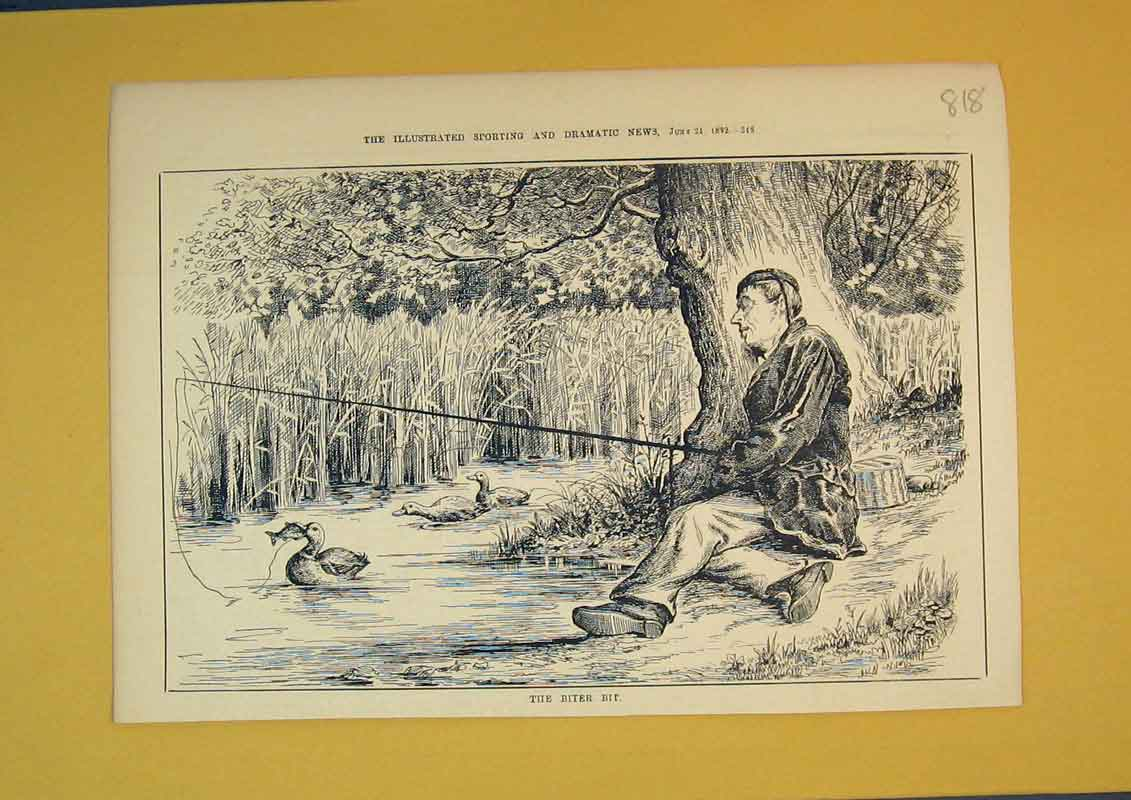 Print 1882 Man Fishing Sleeping Duck River Trees Country 818B390 Old Original