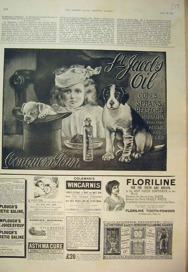 Print Advert St Jacobs Oil Medicine 1891 Floriline Tooth 517B394 Old Original