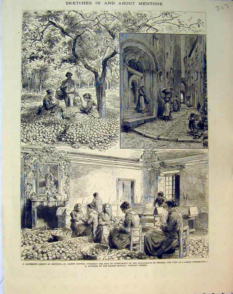 Print Women Gathering Lemons Mentone Maison Bottini France 303B397 Old Original