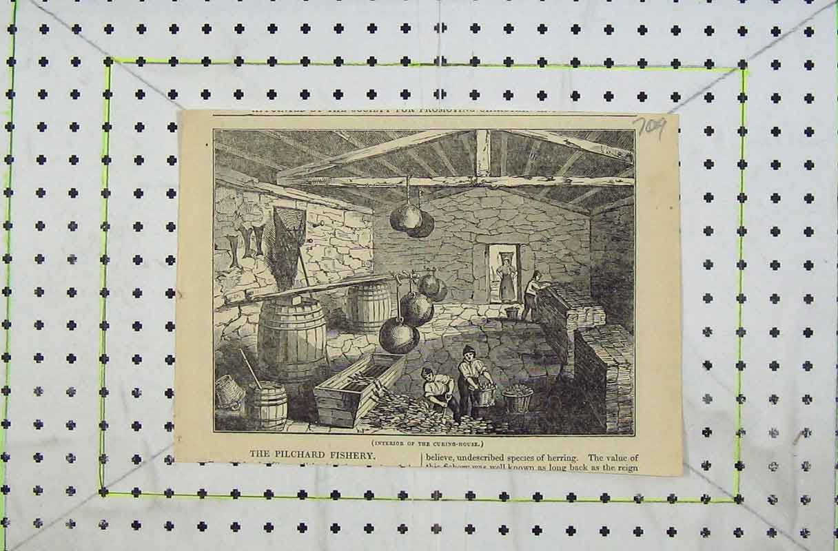 Print Interior Curing House Pilchard Fishery Men Warehouse 709B402 Old Original